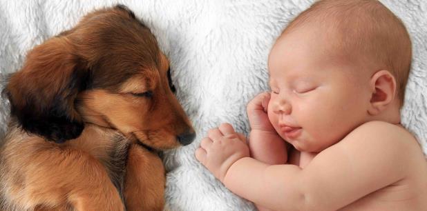 Los recién nacidos no cuentan con muchas defensas y son más vulnerables a infecciones.