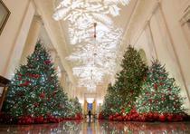 La decoración navideña de la Casa Blanca. (EFE / Michael Reynolds)