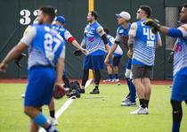 Los Cangrejeros ya no solo representarán a Santurce sino que a todo Puerto Rico en la Serie del Caribe que se jugará del 4 al 10 de febrero en Panamá. (tonito.zayas@gfrmedia.com)