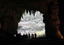 Cavernas del Río Camuy. (Archivo)