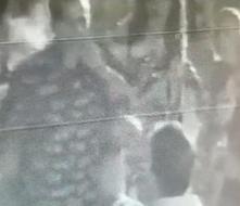 Difunden vídeo sobre agresión a Georgie Navarro para identificar al sospechoso
