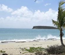 Unas 1,235 personas votan en la consulta para separar a Vieques de Puerto Rico