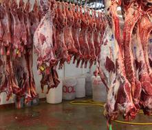 Muere mujer en moledora industrial de carne en Pensilvania