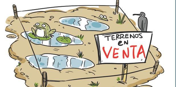 (mbayon@primerahora.com)